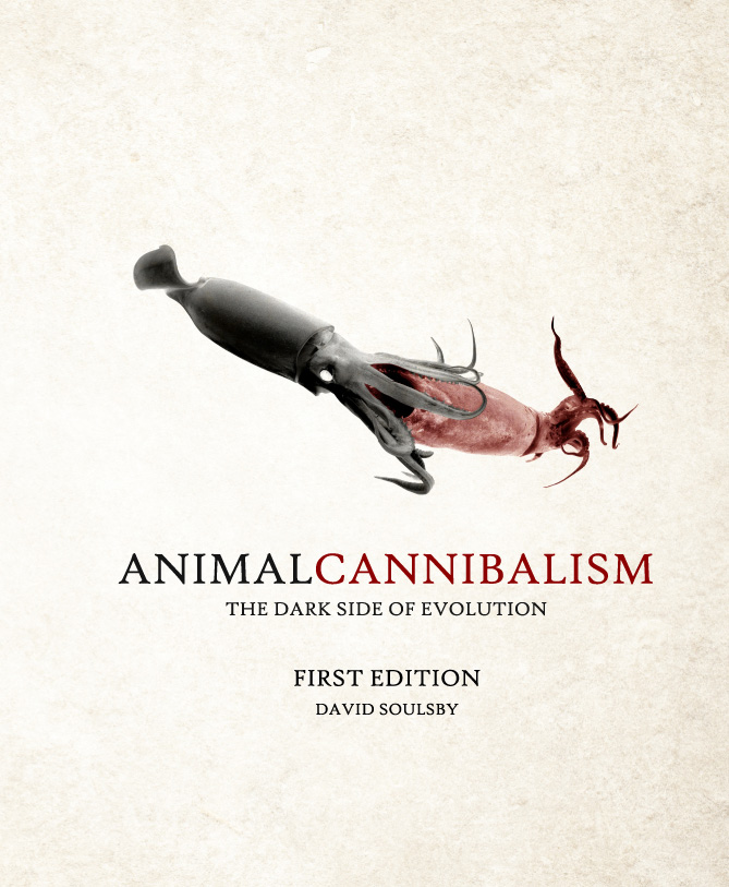 Animal Cannibalism